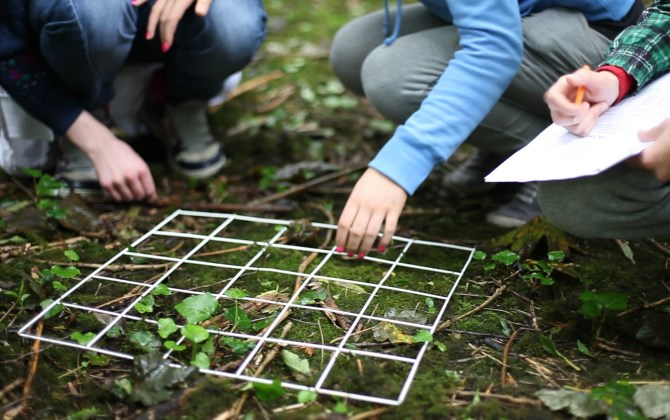 Министр экологии Москвы проведет экологический урок в школе №185