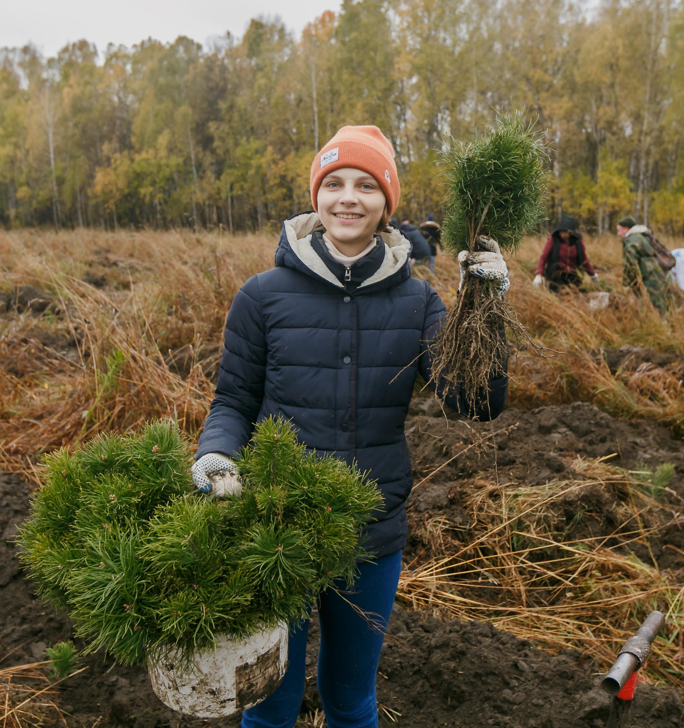 SPLAT посадит 20 тысяч саженцев в четырех регионах России