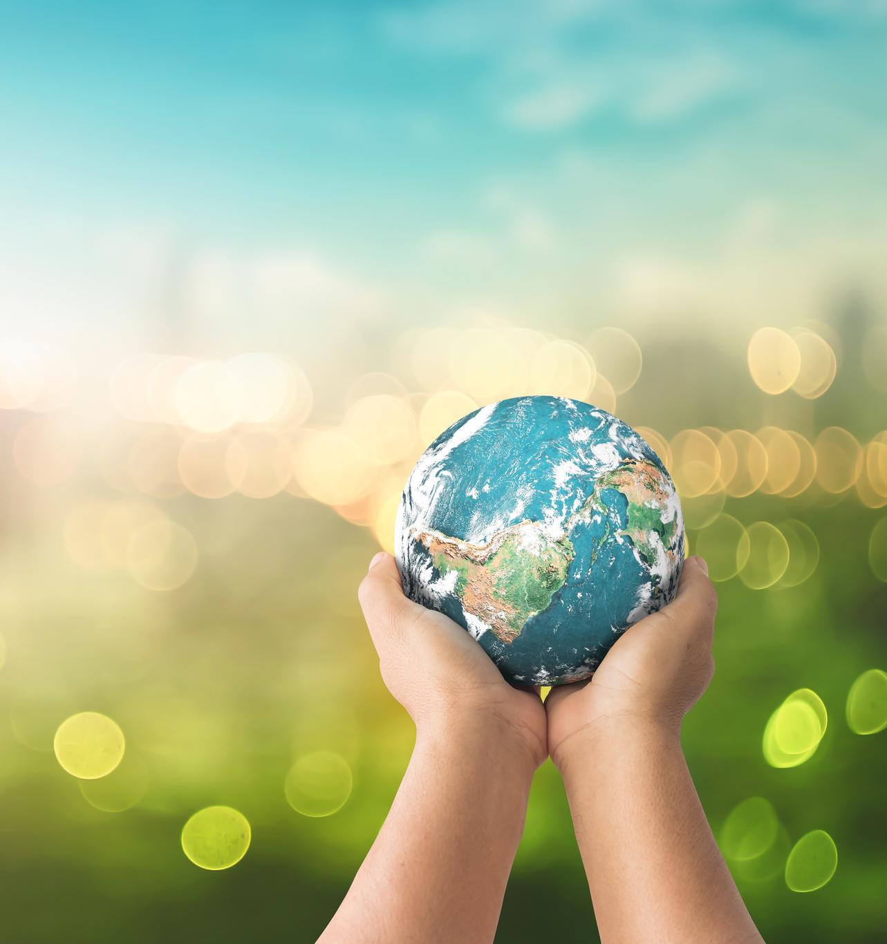 9 трендов устойчивого развития в новом десятилетии