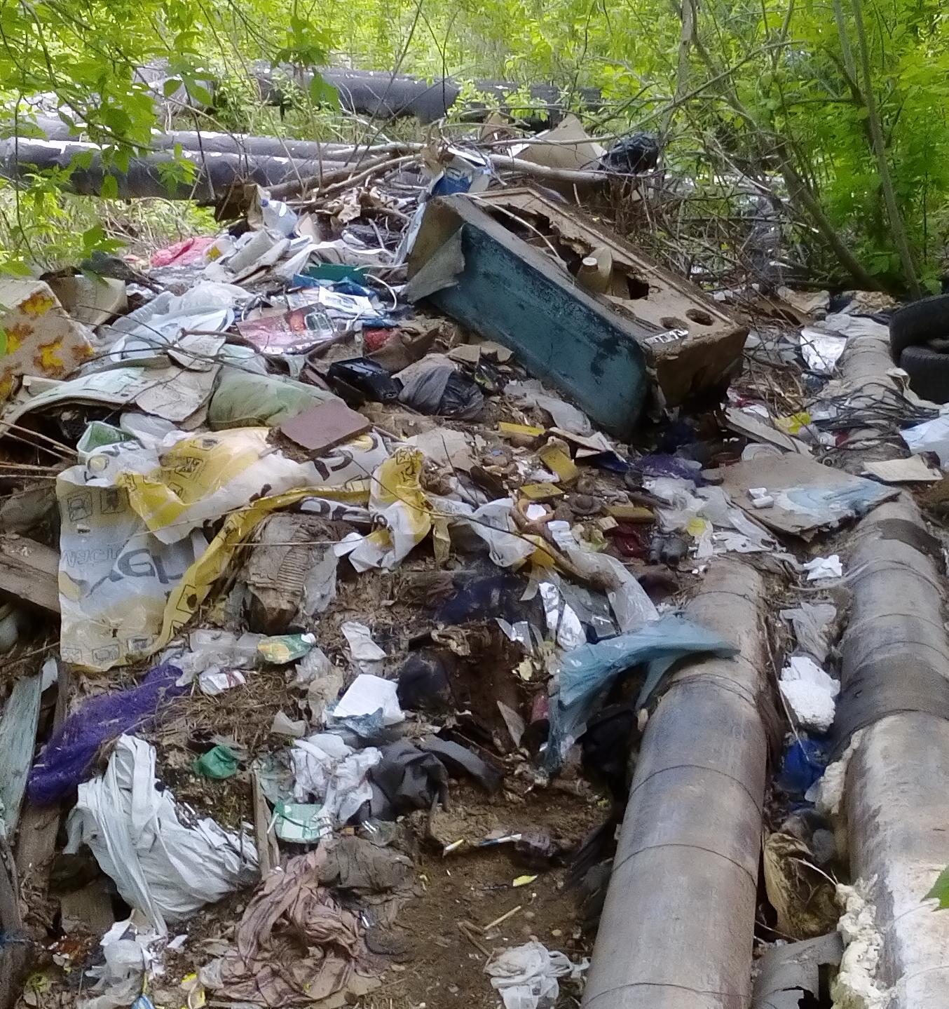 В России ежегодно появляется около 12 тысяч стихийных свалок
