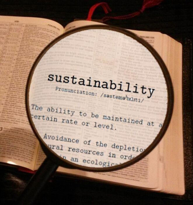 Ссылка дня: тринадцать понятий ответственного потребления