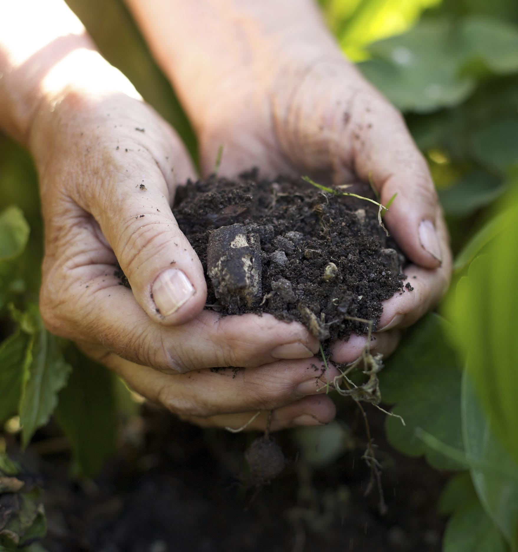 Роскачество впервые сертифицировало производителя «зеленых» минеральных удобрений