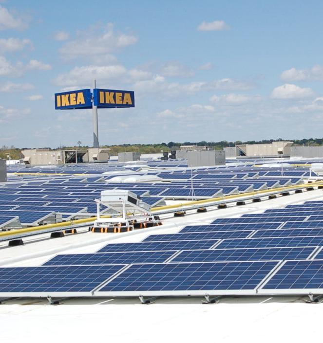 Все магазины IKEA в России будут работать на солнечной энергии