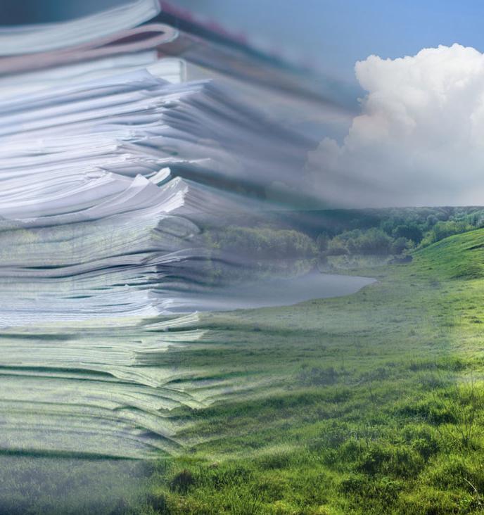 6 важных экологичных законов, которые приняла Госдума за последнее время