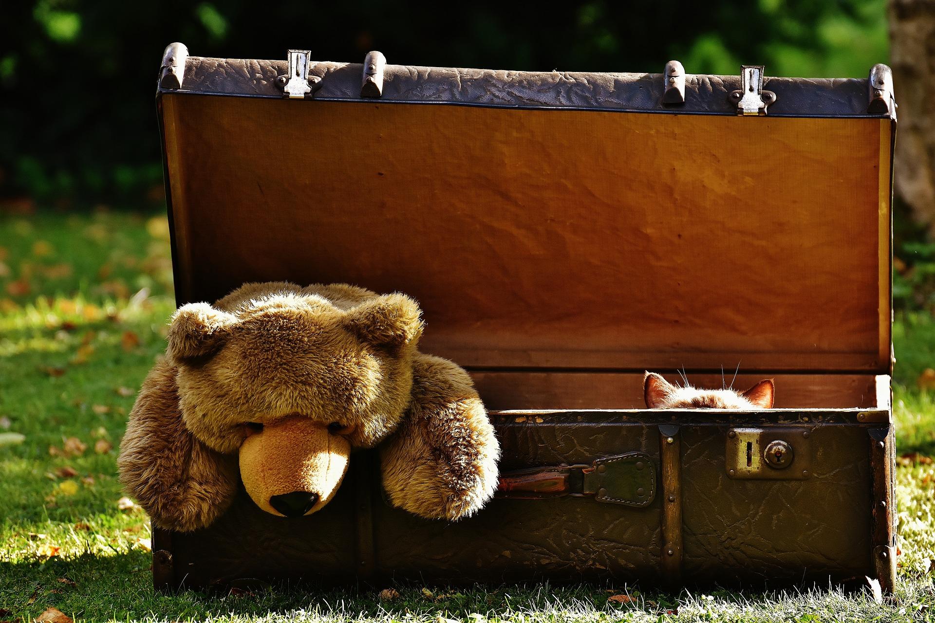 Ссылка дня: куда деть ненужные игрушки