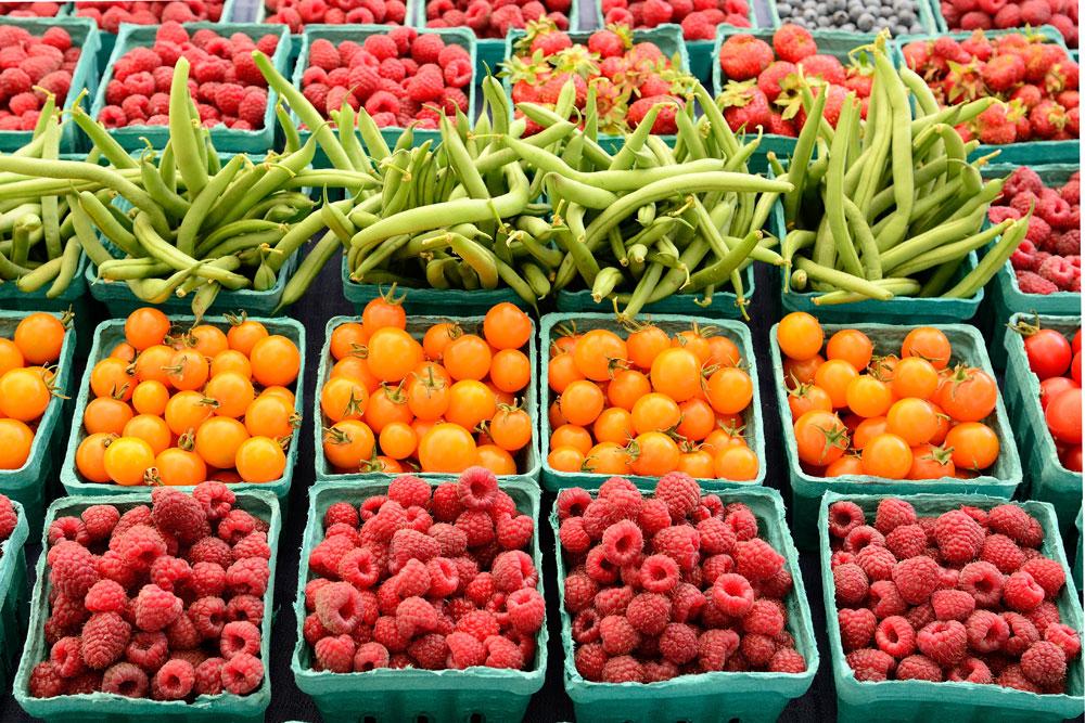 ВБерлине откроется фудшеринговый супермаркет продуктов систекающим сроком годности