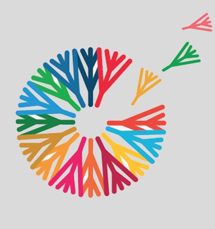 Открыта запись на онлайн-воркшоп о реализации целей устойчивого развития