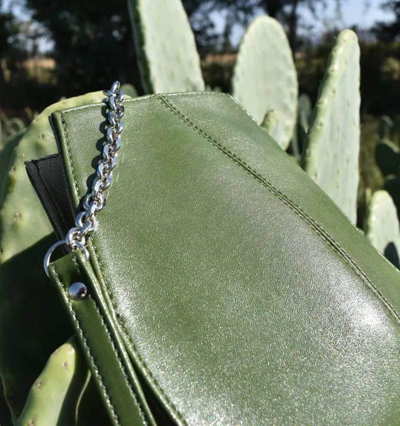 В Мексике создали альтернативу коже на основе кактусов