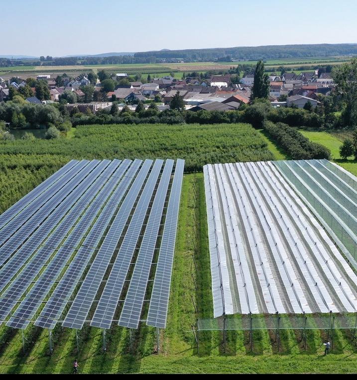 В Германии будут выращивать яблоки за счет солнечной энергии