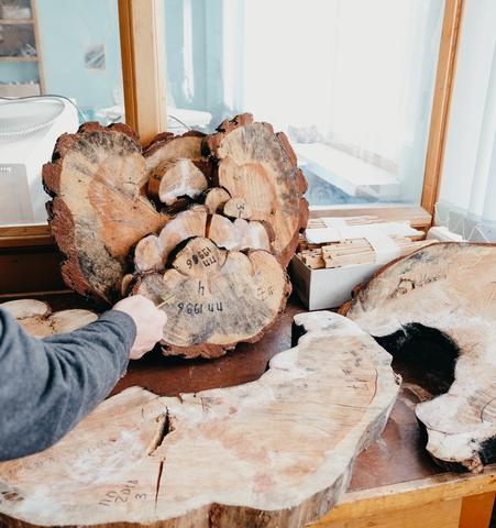 «Арктическая дымка» влияет на прирост сибирской тайги