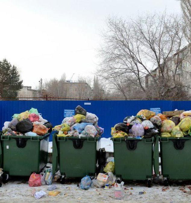 Регоператор Владивостока заплатит 7 млн рублей за мусорный коллапс