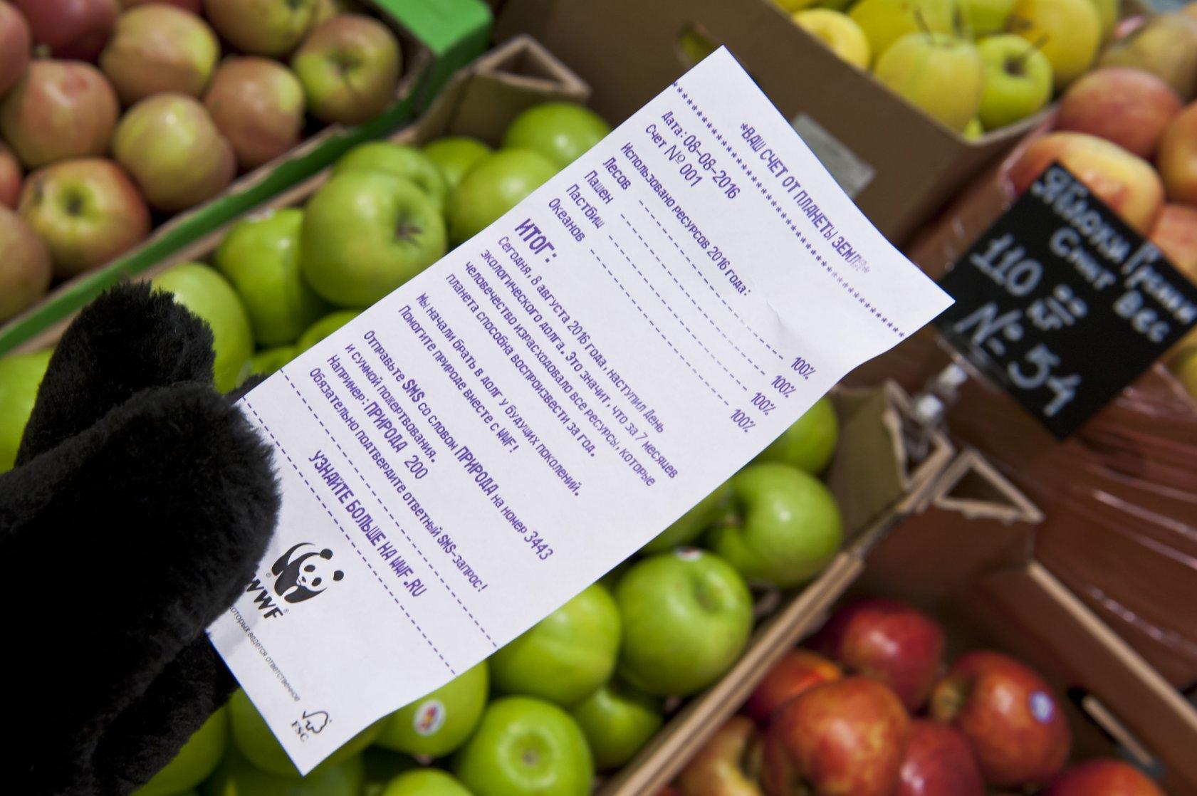 Клиенты McDonald's и других кафе и магазинов получат экологические чеки от WWF