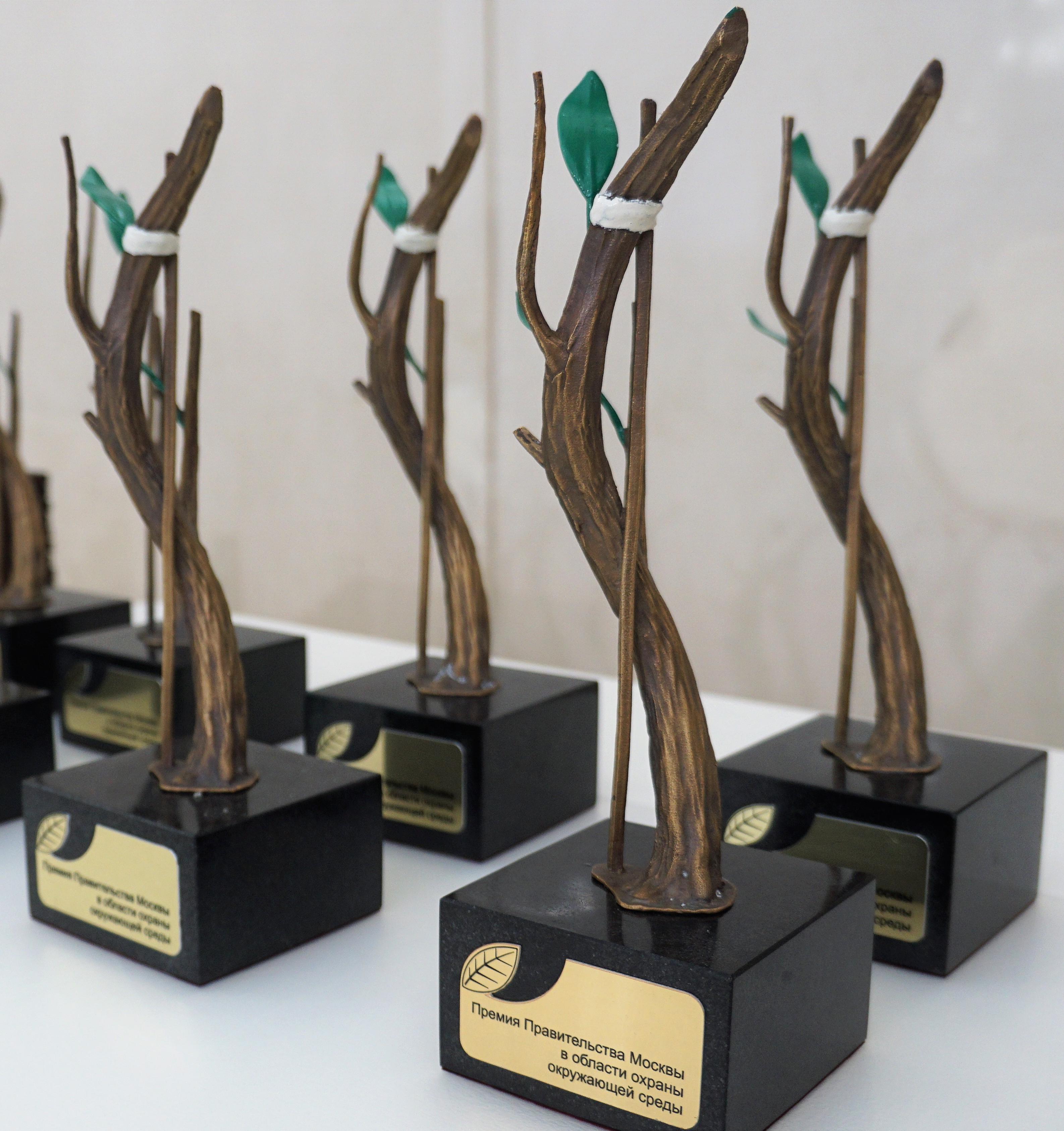 Премия в области охраны окружающей среды: как подать заявку