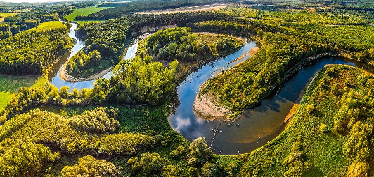 Жители Татарстана сами выберут места посадки новых деревьев в регионе
