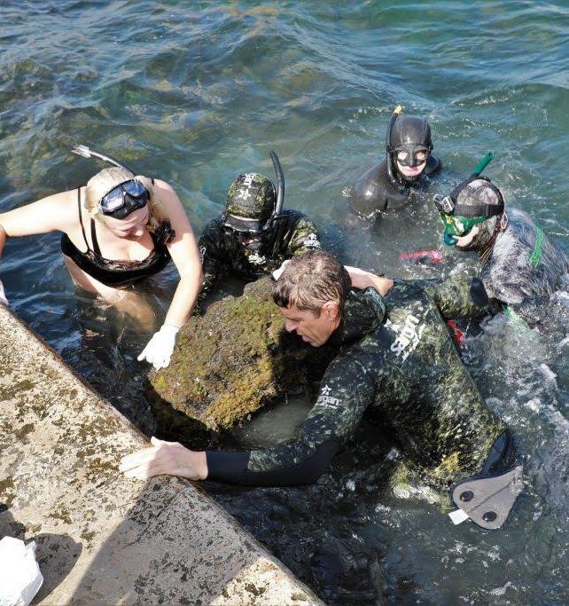 В Севастополе прошла акция «Чистый берег. Чистое море»
