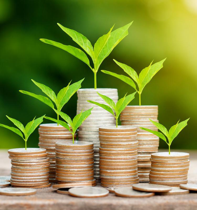 6 примеров: Как российские банки становятся экологичными