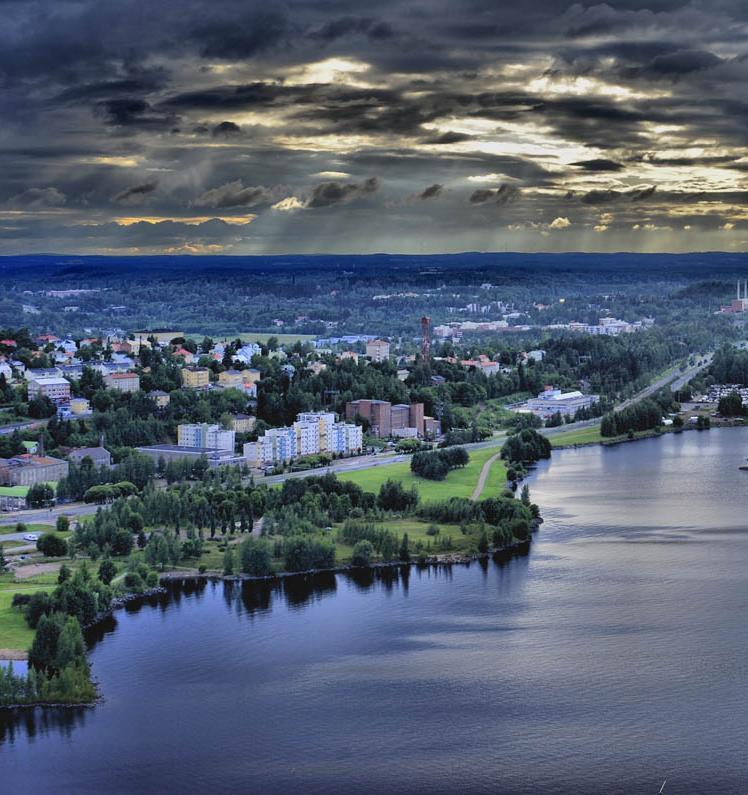Российский проект помог финским экоактивистам найти друг друга