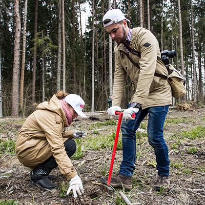 Эксперимент: как посадить дерево, купленное через интернет