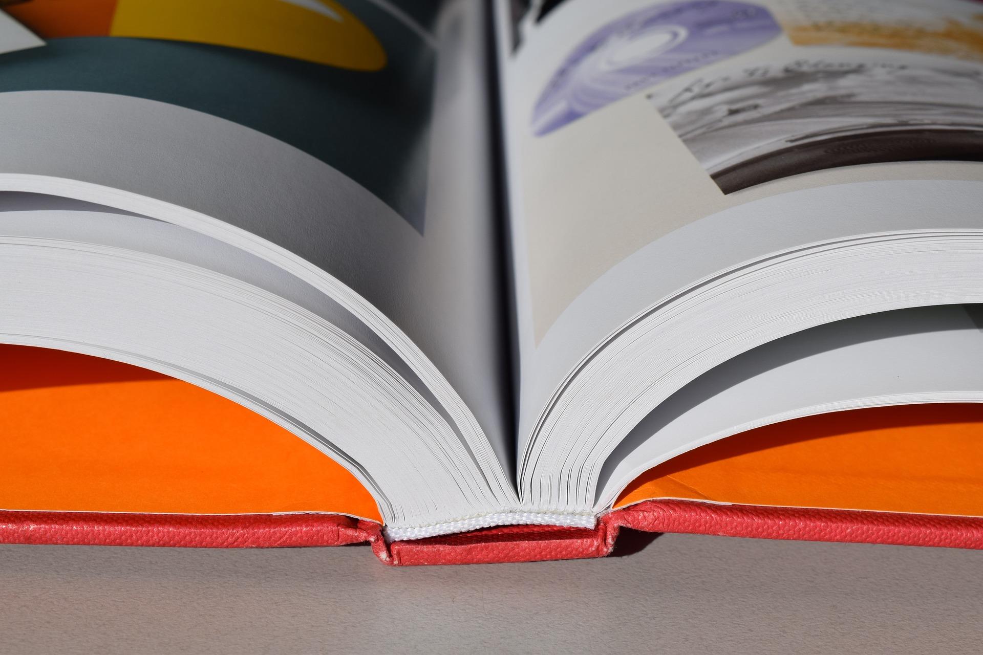 Учебники по ОБЖ могут заменить пособиями по экологии
