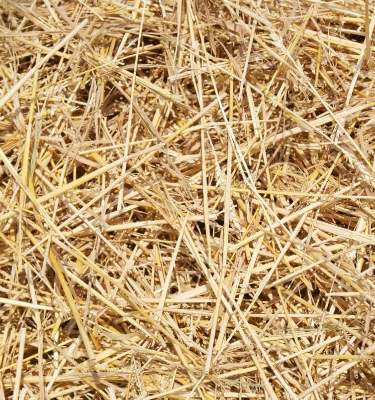 На оборонном химкомбинате под Тулой запустят производство экопосуды из льна и соломы