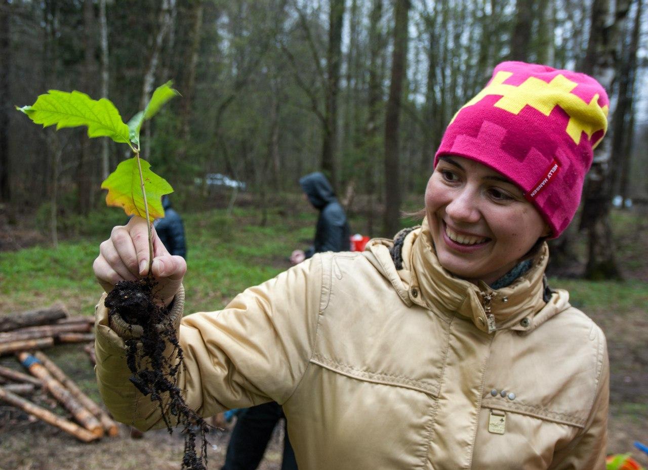 Участники экопраздника в Петербурге посадят деревья