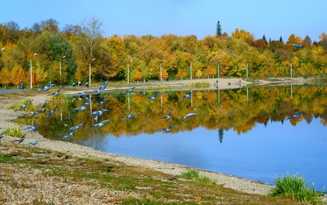 Уфа стала самым экологически чистым городом России в 2013 году