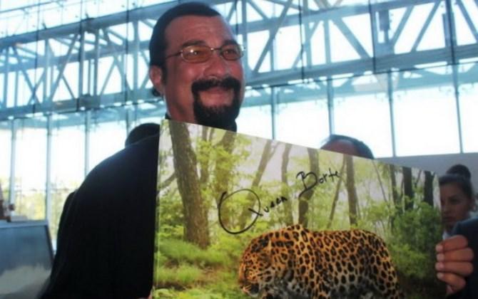 Стивен Сигал поможет дальневосточным леопардам
