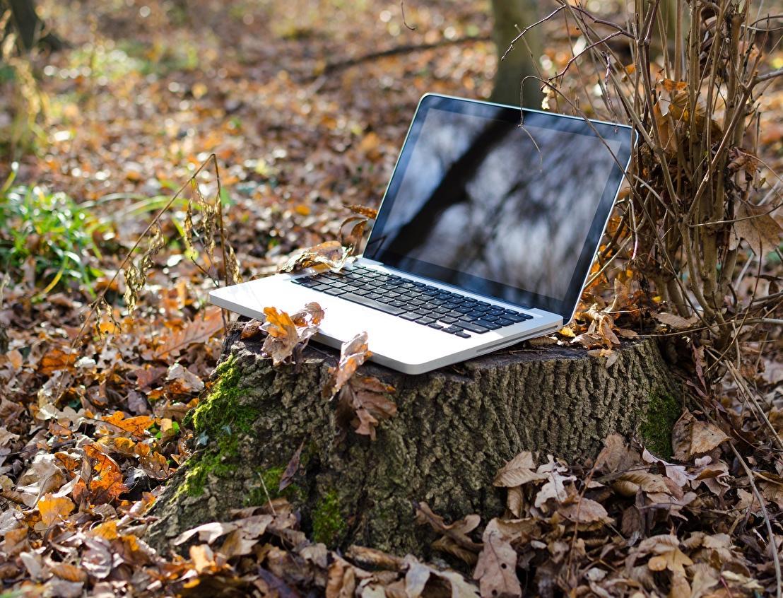 ИД «Коммерсантъ» приглашает на экологический онлайн-марафон