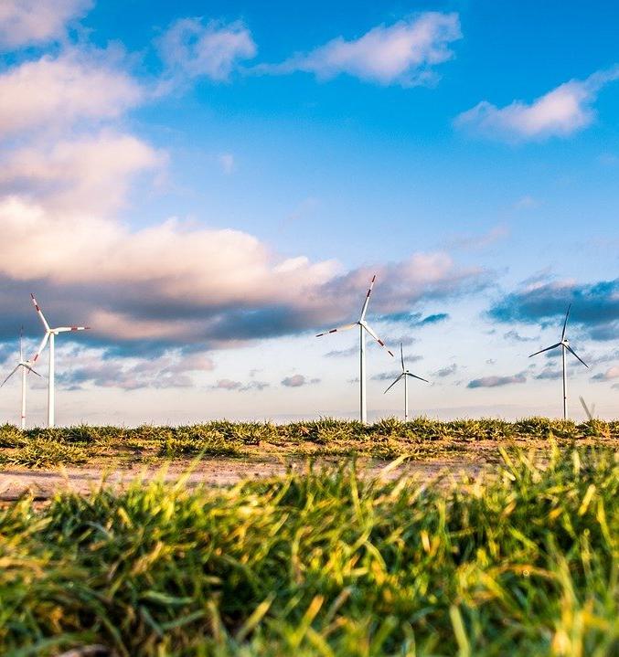 Зеленые госзакупки помогут свести к минимуму негативное воздействие на окружающую среду