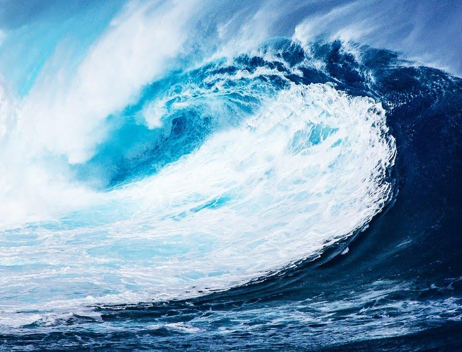 Как «Сименс» создает бизнес-модель для решения проблемы пластиковых отходов в океане