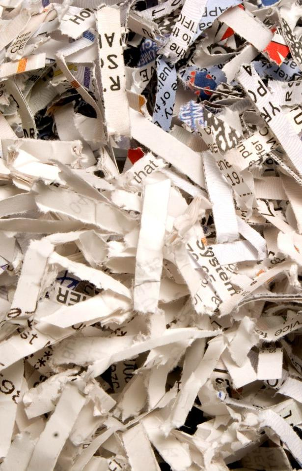 Раздельный сбор мусора внедрят в нескольких округах Подмосковья с 1 сентября