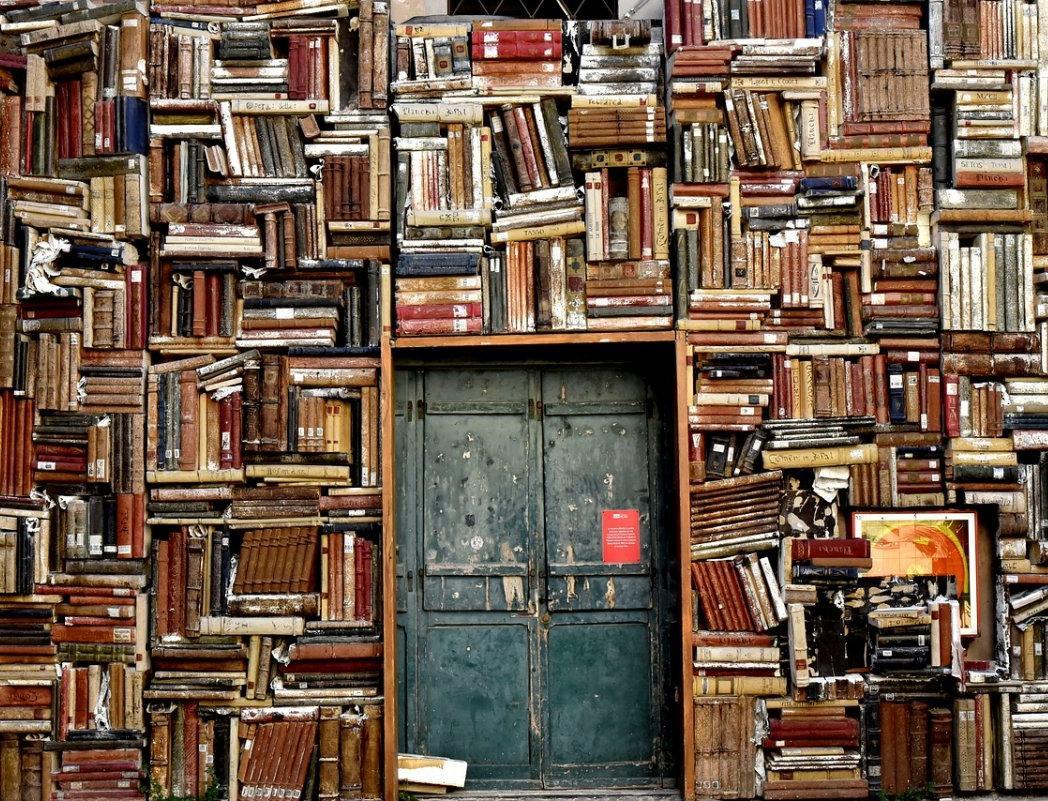 Библиотеки Москвы бесплатно раздают книги всем желающим