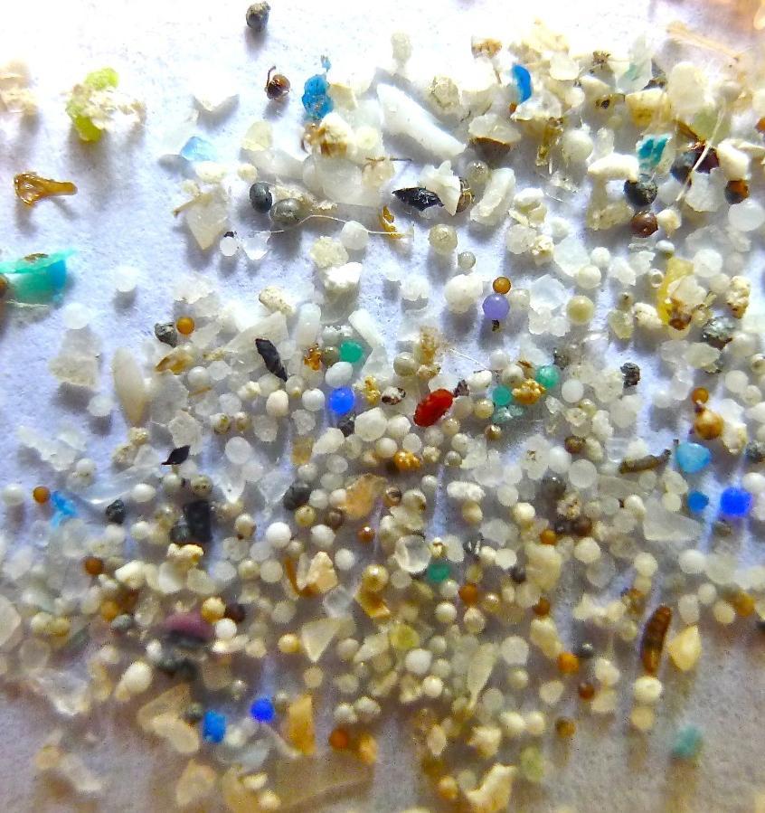 Микропластик нашли в легких, печени и почках человека
