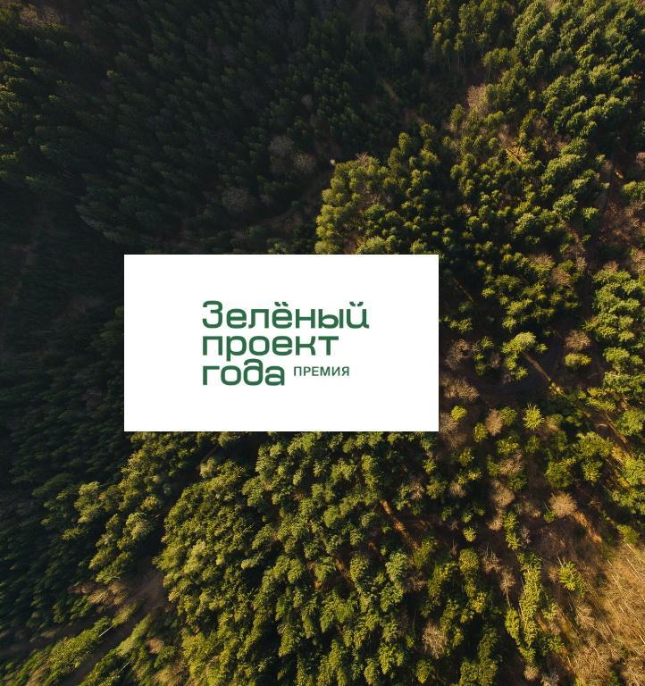 Уход за лесом и упаковка для яиц: участники экопремии FSC России «Зеленый проект года-2020»