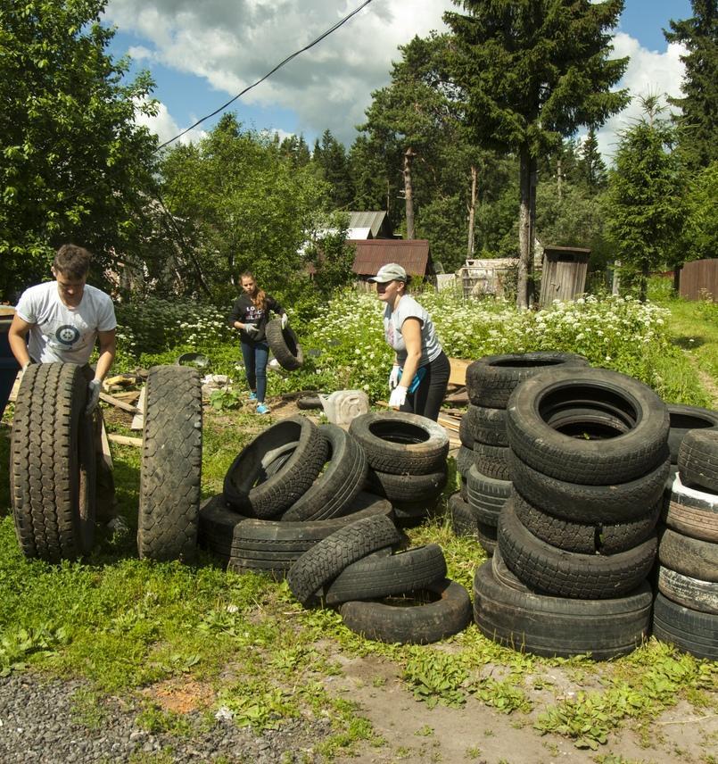 В Ленинградской области обнаружили 40 тонн выброшенных покрышек