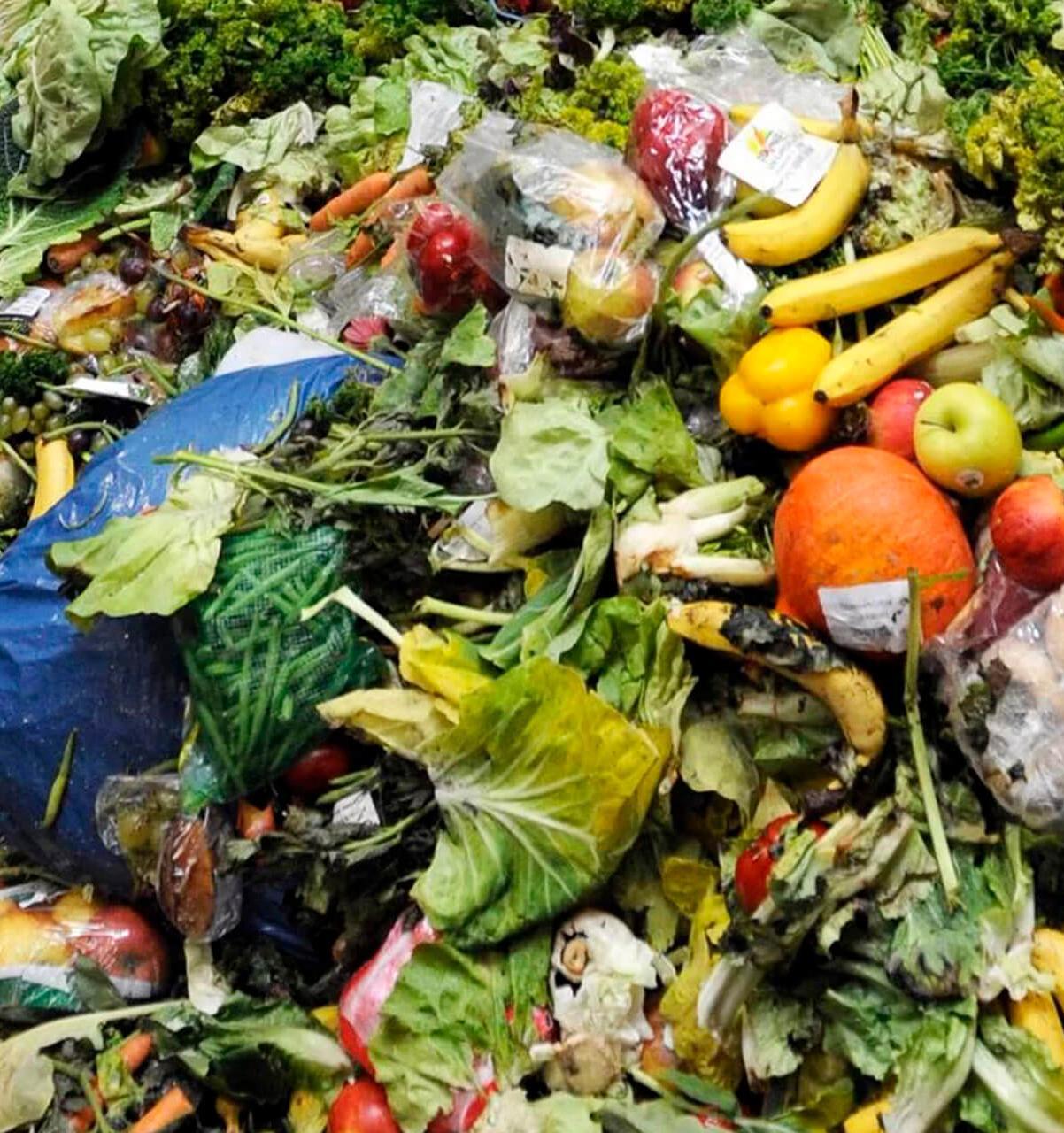 На долю выбрасываемых продуктов приходится 10% всех парниковых газов
