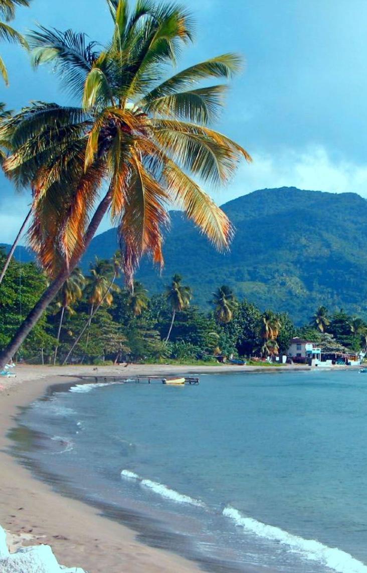 Карибский остров запретил все одноразовые пластиковые вещи
