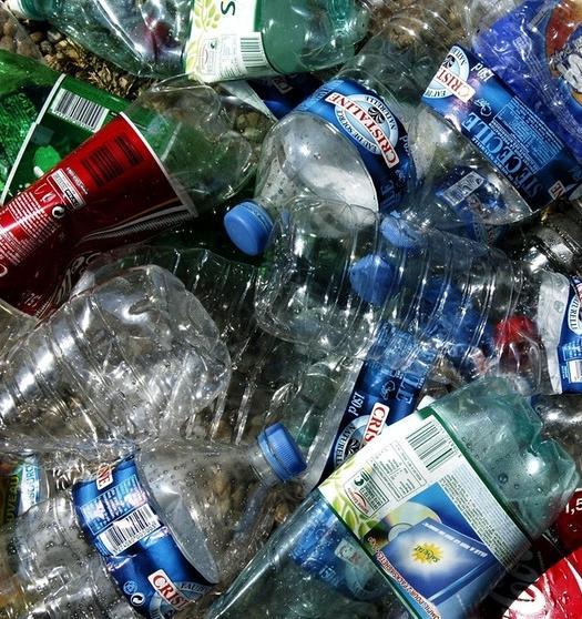 Мэр Пензы планирует ввести в городских школах раздельный сбор отходов