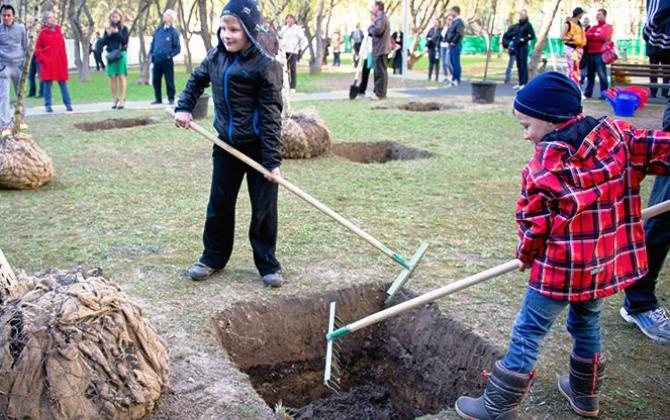 Мосприрода ищет волонтеров для посадки деревьев