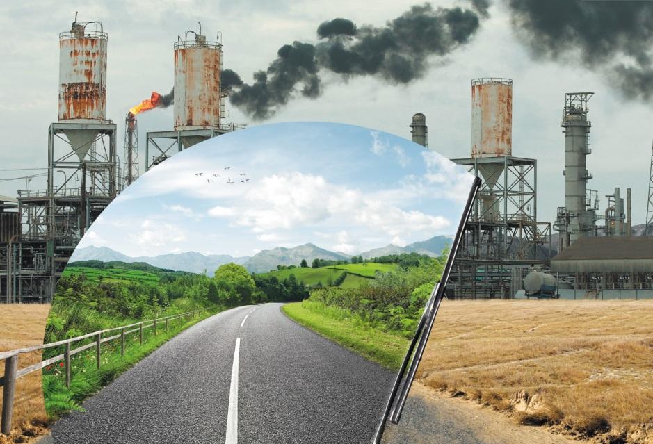 7 реальных экологических проектов Подмосковья