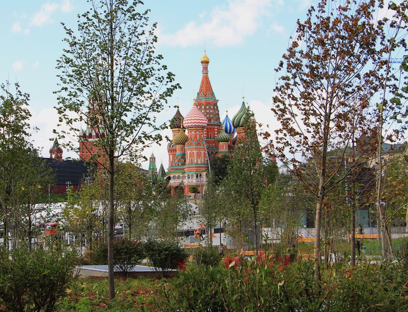 В Москве ужесточают ответственность за нанесение вреда деревьям