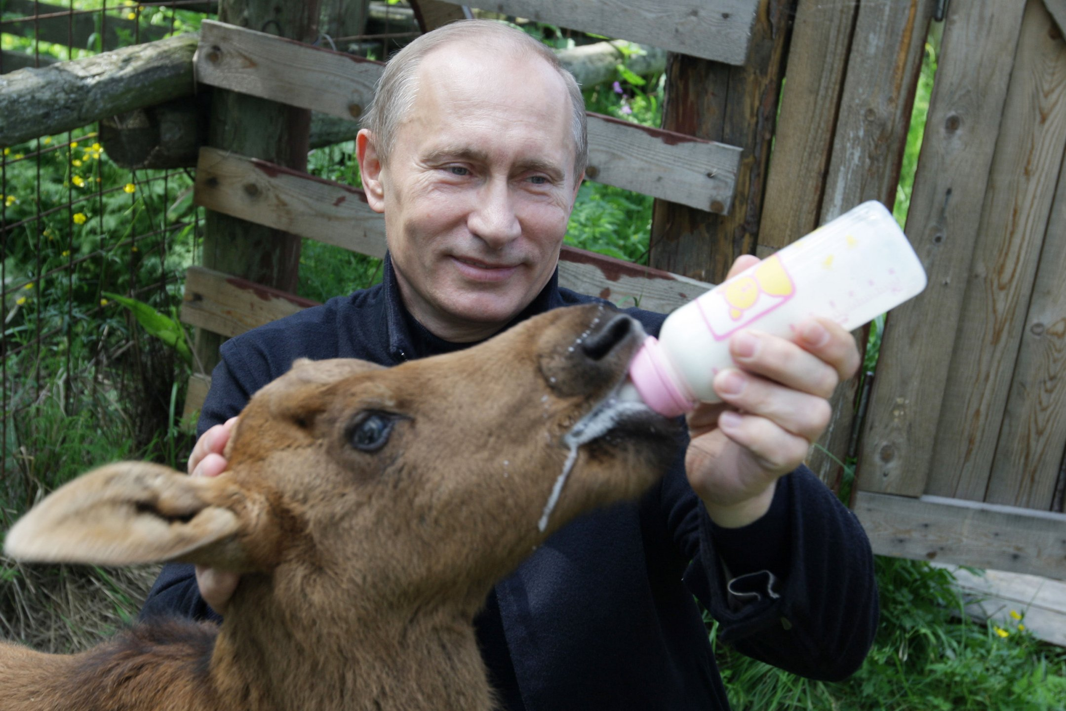Путин ответил на предложение Гринпис запретить в России пластиковые пакеты