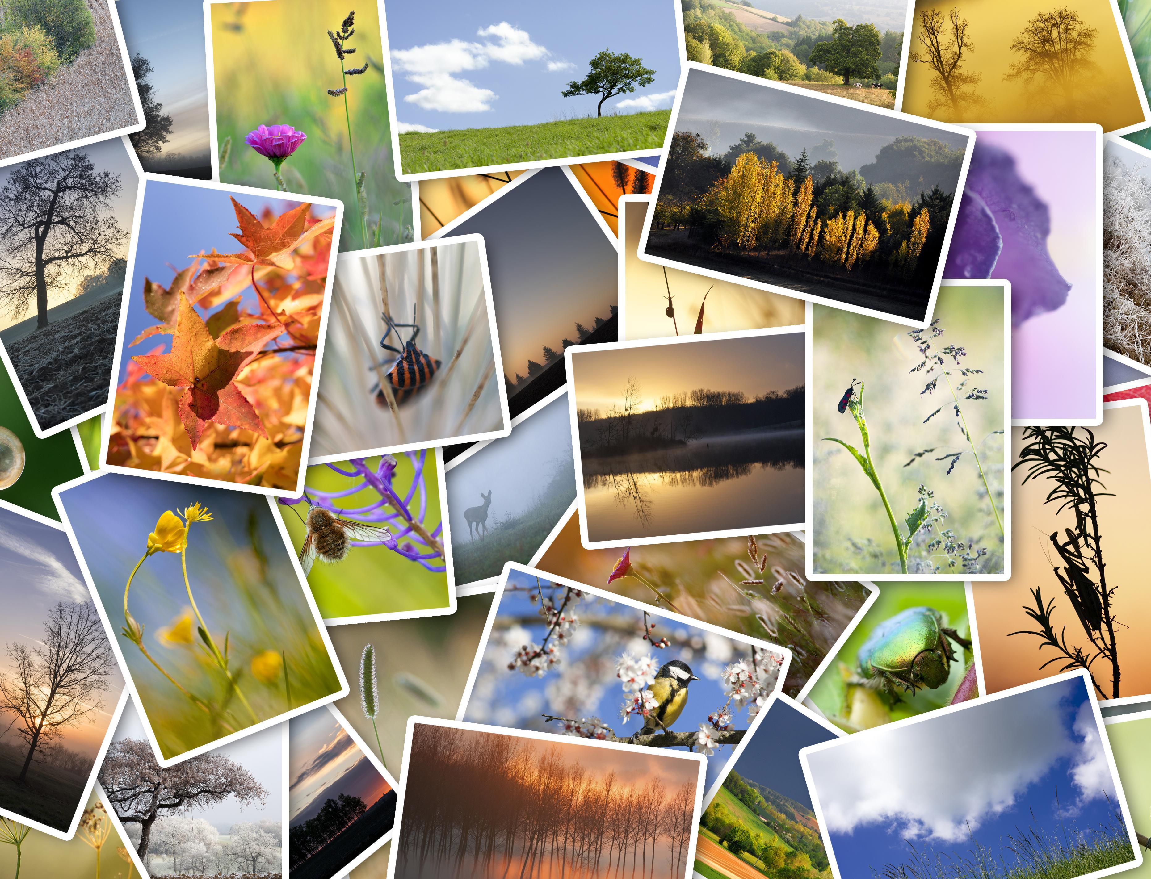 Инстаграм дня: как в разных странах отмечают Всемирный день окружающей среды