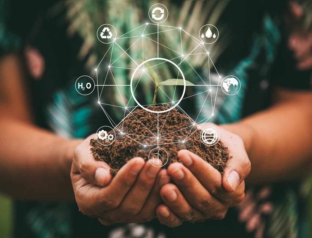 ТОП-7 самых популярных экологических новостей 2020 года