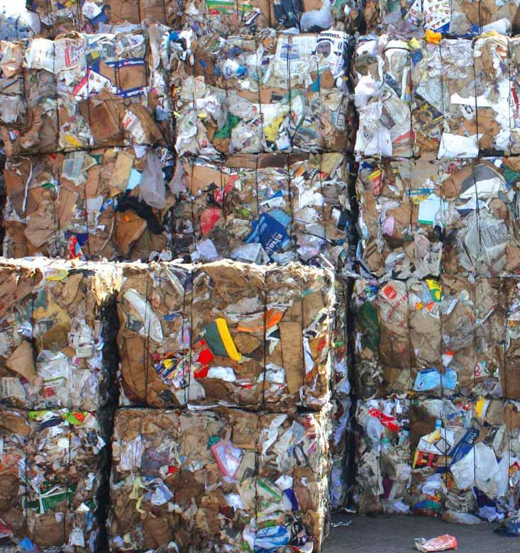 Coca Cola установит в Казани 500 контейнеров для раздельного сбора