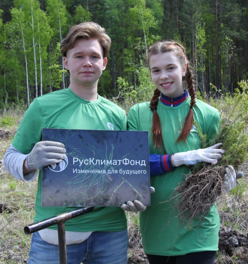Экопроект «Зелёный чемоданчик» превратит ненужные вещи в леса