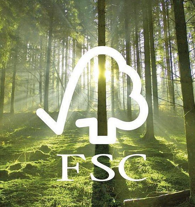  Итоги года от FSC: Россия вышла на первое место в мире по площади FSC-сертифицированных лесов