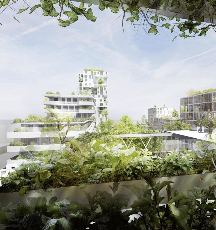Назван самый экологичный город мира