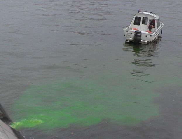 «Зеленая жидкость», попавшая в Москву-реку, не представляет опасности