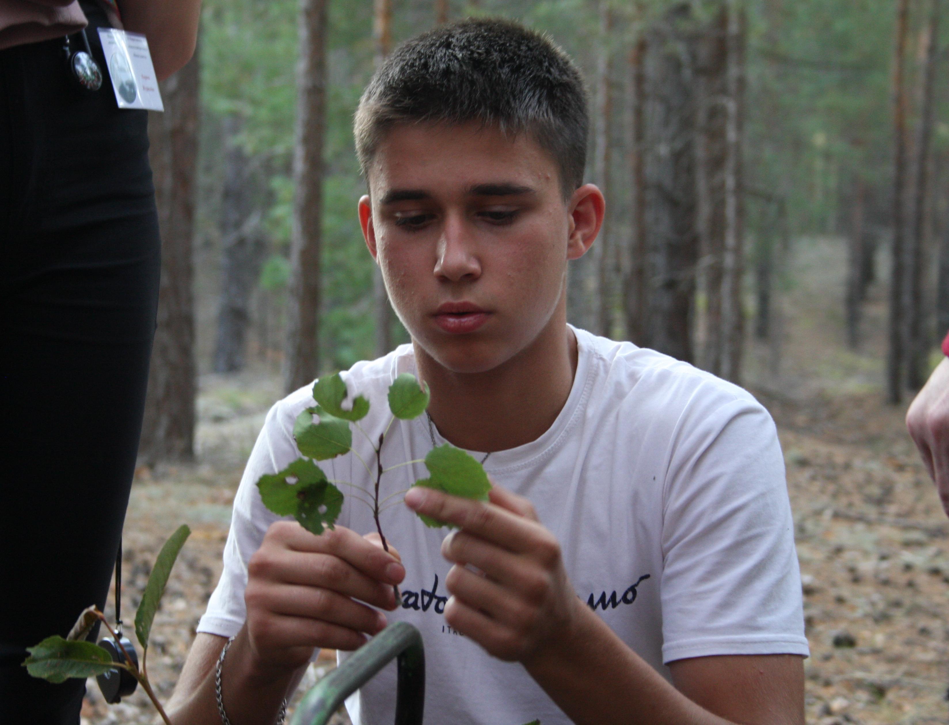 Школьники из лесничеств и экообъединений представили проекты на фестивале «Живая планета»